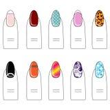 Vector el ejemplo, diversos tipos de esmalte de uñas en los clavos Fotografía de archivo libre de regalías