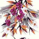 Vector el ejemplo inconsútil en las hojas de una palma tropicales del tema y ilustración del vector