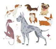 Vector el ejemplo, sistema de perros criados en línea pura divertidos, en un fondo blanco ilustración del vector