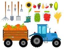 Vector el equipo de cosecha plano de los iconos de la cosecha para la agricultura y la horticultura, las frutas naturales sanas y Imagen de archivo libre de regalías