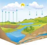 Vector el esquema del ciclo del agua en naturaleza Imagenes de archivo