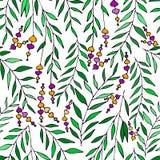Vector el estampado de flores en estilo del garabato con las flores y las hojas Trate con suavidad, salte fondo floral Fotos de archivo