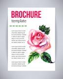 Vector el folleto y el aviador, plantilla del cartel con la rosa hermosa abstracta del rosa de la flor de la acuarela Vector de l Fotografía de archivo libre de regalías