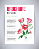 Vector el folleto y el aviador, plantilla del cartel con las amapolas rojas de la flor hermosa abstracta de la acuarela con las h Fotos de archivo
