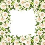 Vector el fondo con las rosas blancas y las flores de la fresia Fotografía de archivo