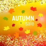 Vector el fondo de la venta del otoño con las hojas de otoño que caen rojas, anaranjadas, verdes y amarillas Imagenes de archivo