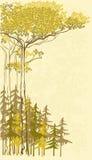Vector el fondo del stok del pino y de árboles spruce Imágenes de archivo libres de regalías