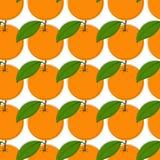 Vector el fondo inconsútil del modelo con las naranjas dibujadas mano en estilo del vintage En blanco Foto de archivo