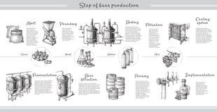 Vector el infographics de la cerveza con los ejemplos del proceso de la cervecería