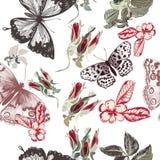 Vector el modelo del vintage con las rosas y las mariposas en estilo retro Imagenes de archivo