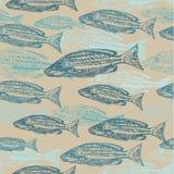 Vector el modelo inconsútil con bosquejos de pescados encendido Imágenes de archivo libres de regalías