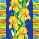 Vector el modelo inconsútil con la flor del iris amarillo del esquema, el brote, la hoja verde y las rayas en el fondo azul Fondo Fotografía de archivo libre de regalías