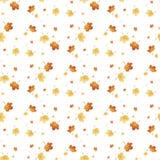Vector el modelo inconsútil con las diversas hojas de otoño coloridas en un fondo blanco Imágenes de archivo libres de regalías