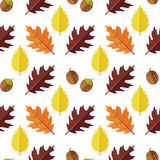 Vector el modelo inconsútil con las diversas hojas de otoño coloridas en un fondo blanco Imagen de archivo libre de regalías