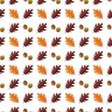 Vector el modelo inconsútil con las diversas hojas de otoño coloridas en un fondo blanco Fotografía de archivo libre de regalías