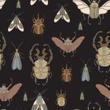 Vector el modelo inconsútil con los escarabajos del color en fondo negro Fotos de archivo libres de regalías