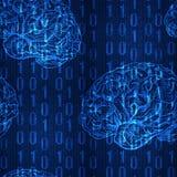 VECTOR el modelo inconsútil con números y el bosquejo descendentes del cerebro, azul Imagen de archivo libre de regalías
