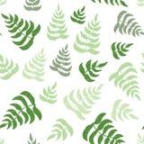 Vector el modelo inconsútil del eco con las hojas verdes dibujadas mano Imágenes de archivo libres de regalías