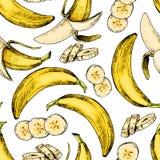 Vector el modelo inconsútil dibujado mano del plátano aislado Arte coloreado grabado Objetos vegetarianos tropicales de Delicicou Fotos de archivo libres de regalías