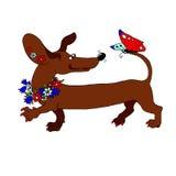 Vector el perro basset de la imagen con una guirnalda de flores, que mira ilustración del vector