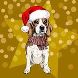 Vector el retrato del perro del beagle que lleva el sombrero y la bufanda de santa en bokeh de la estrella y de las bengalas Colo libre illustration