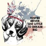 Vector el retrato del perro del beagle, llevando el casco de la pluma Ejemplo dibujado mano del perro casero Aislado en fondo col ilustración del vector