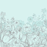 Vector elegance floral background with graphic spring flowers Royalty Free Stock Images