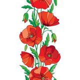 Vector elegance seamless pattern with outline red Poppy flower, bud and green leaves on the white background. Vertical border. Vector elegance seamless pattern Stock Photos