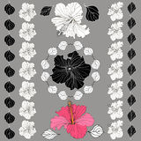Vector elegant decorative hibiscus flowers. Design elements.Set of black and white brushes and wreaths. Isolated silhouettes Royalty Free Illustration