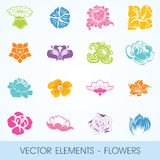 Vector elements - flowers Royalty Free Stock Image