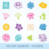 Vector elements - flowers Stock Photography
