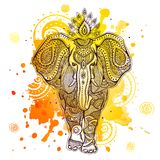 Vector elephant illustration with watercolor Stock Photo