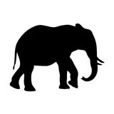 Vector elephant silhouette. Vector illustration of african elephant