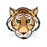 Vector emerald green eyes tiger portrait. Predator head colorful isolated royalty free illustration