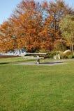 Vector en el parque Fotos de archivo