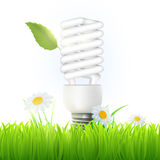 Vector energy saving lamp. With green leaf and flowers Stock Photo