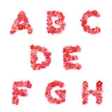 Vector English floral alphabet with flowers Stock Photos