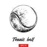 Hand drawn sketch of tennis ball in black isolated on white background. Detailed vintage etching style drawing. royalty free illustration