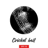 Hand drawn sketch of cricket ball in black isolated on white background. Detailed vintage etching style drawing. vector illustration