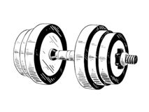 Hand drawn sketch of dumbbell in black isolated on white background. Detailed vintage etching style drawing. stock illustration