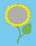 Vector enige zonnebloem Stock Foto