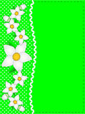 Vector Eps 10 Green Copy Space, Polka Dots, Ric Ra Stock Photo