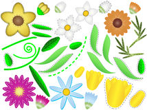 Vector Eps 8 Flowers and Leaves to Design Your Own Royalty Free Stock Photo