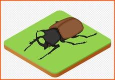 Vector EPS del escarabajo Imagenes de archivo