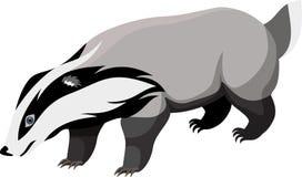 Vector European badger Royalty Free Stock Photos