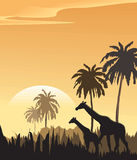 Vector evening landscape illustration. With wild animals Stock Photos