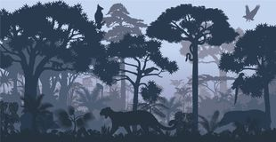 Vector evening tropical rainforest Jungle background. With jaguar, harpy, monkey, parrot, toucan, anaconda and boar Stock Image