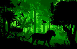 Vector evening tropical rainforest Jungle background with lion, harpy, python and butterflies Stock Images
