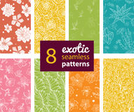 Vector Exotic Flowers Eight Set Seamless Patterns Royalty Free Stock Photography