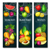 Vector exotic fresh fruits product banners set. Exotic fruits product banners set of fresh grape, tropical pineapple or kiwi and apple or peach. Vector design of Royalty Free Stock Photography